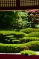 京都新聞写真コンテスト「一服どうぞ」