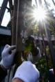 京都新聞写真コンテスト「正月仕度」