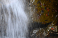 京都新聞写真コンテスト「滝のしぶき」
