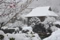 京都新聞写真コンテスト「雪景色」