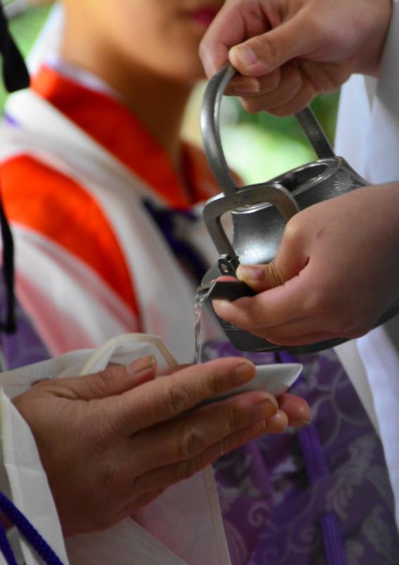 京都新聞写真コンテスト「伝統の杯」
