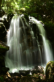 京都新聞写真コンテスト「光と影・鶏鳴の滝」