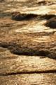 京都新聞写真コンテスト「光る波」