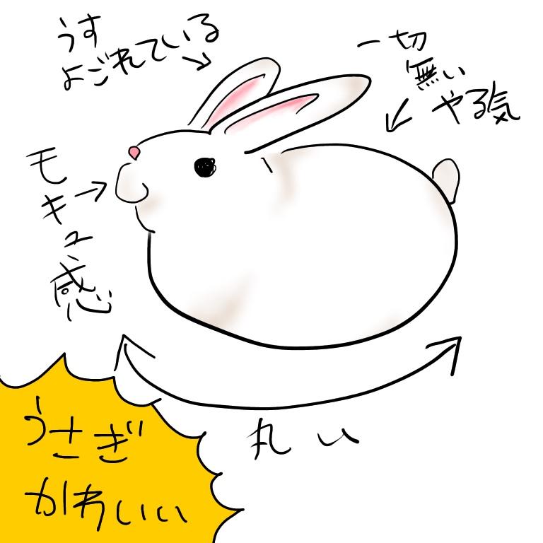f:id:hayoneko:20190727133630j:plain
