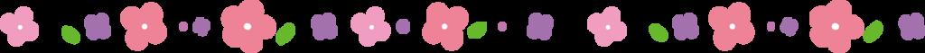 f:id:hazukiken:20180301122352p:plain