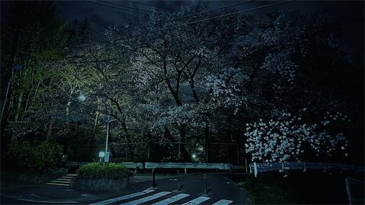 f:id:hazukikose:20210404130447j:image