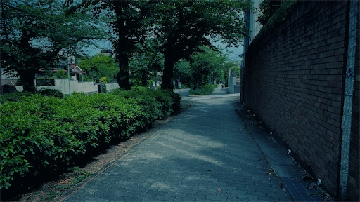 f:id:hazukikose:20210516110449j:image