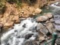 [河][山口県]長門峡②2012.4.5