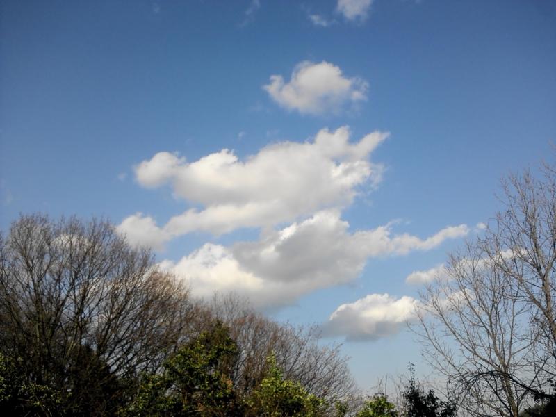 空Ⅱ 2012.4.6