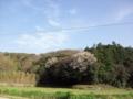 [空]空2012.4.12