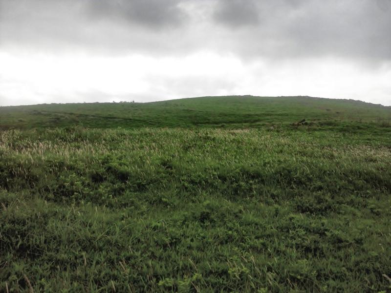 草原と空2012.6.4