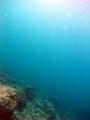 [海][ダイビング]ダイビング2012.9.21⑤