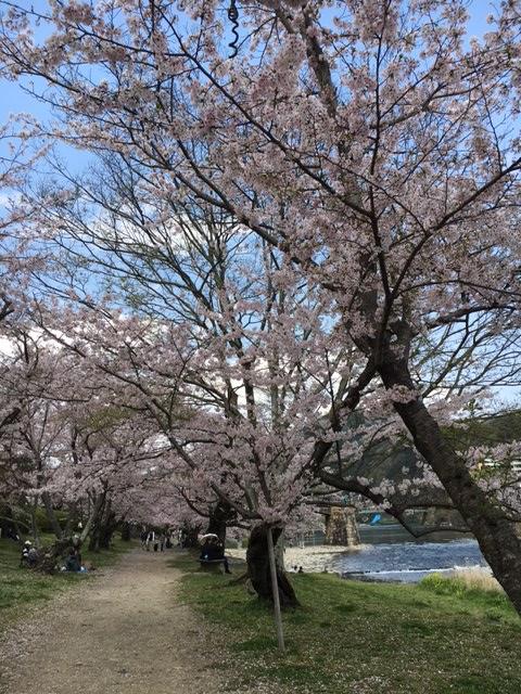 f:id:hd-higashihiroshima:20170413105407j:plain