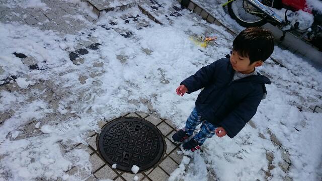 f:id:hd_murakami:20180127172803j:image