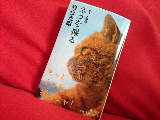 f:id:hd_murakami:20180528182600j:plain