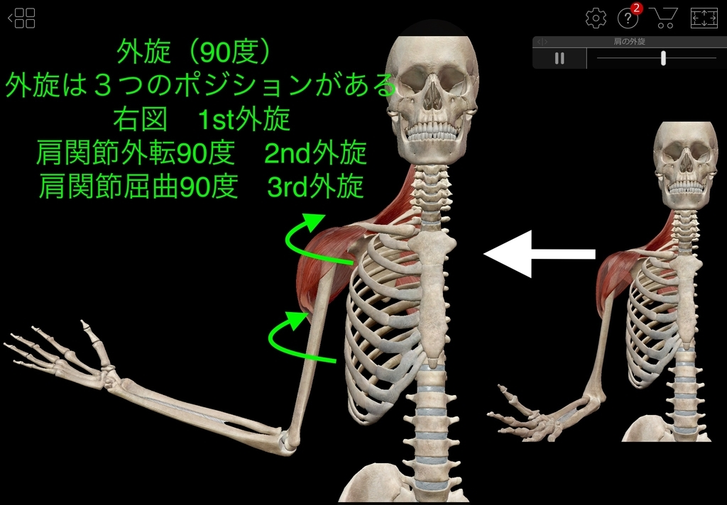 f:id:health--life:20181206195612j:plain