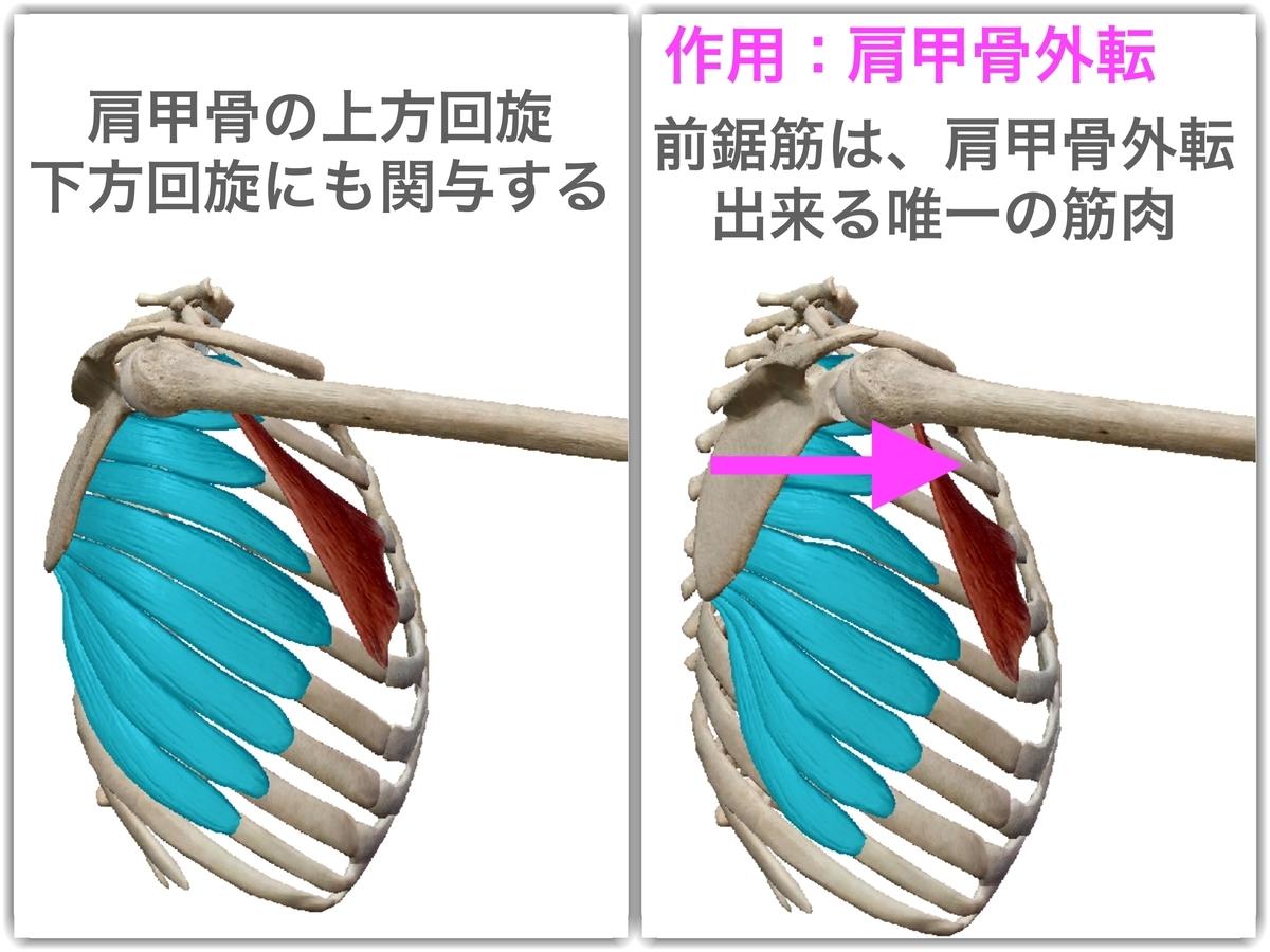 f:id:health--life:20190425160206j:plain