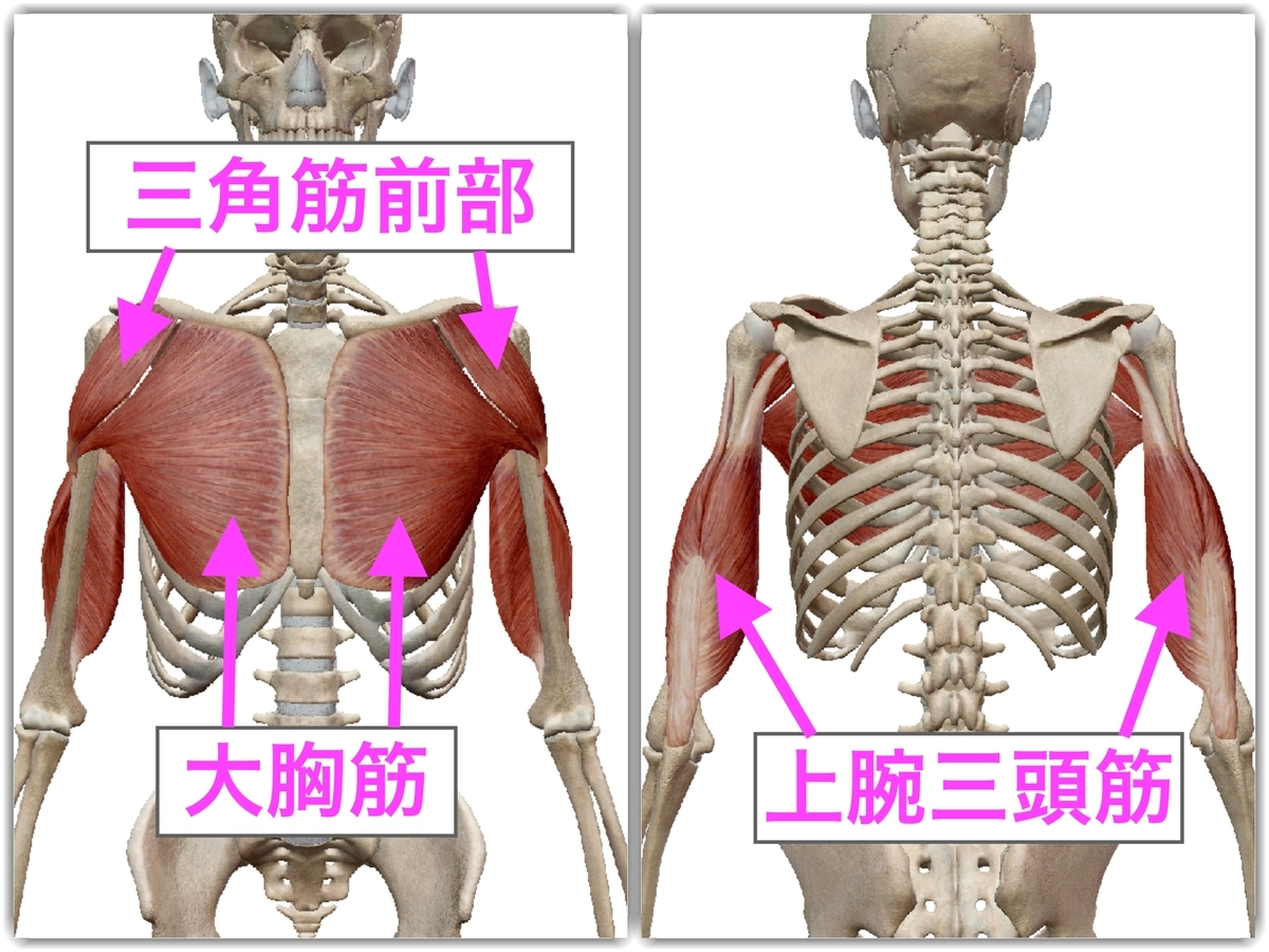 f:id:health--life:20190502135558j:plain