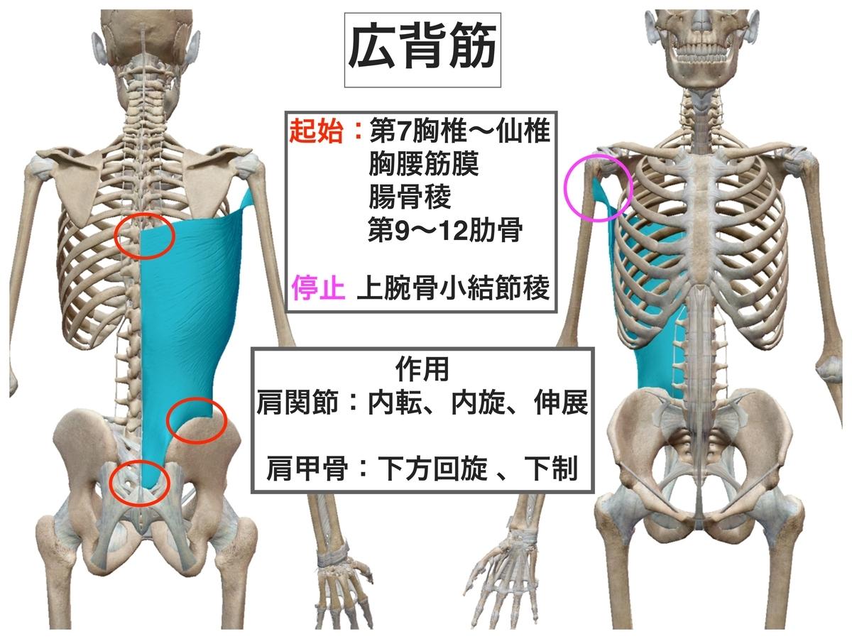 f:id:health--life:20200402104818j:plain