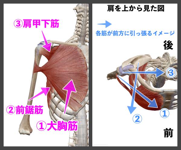 f:id:health--life:20210116194000p:plain