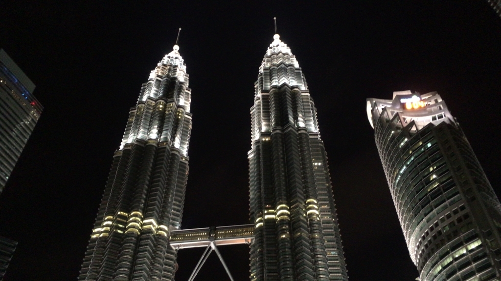 Petronas Twin Towers3