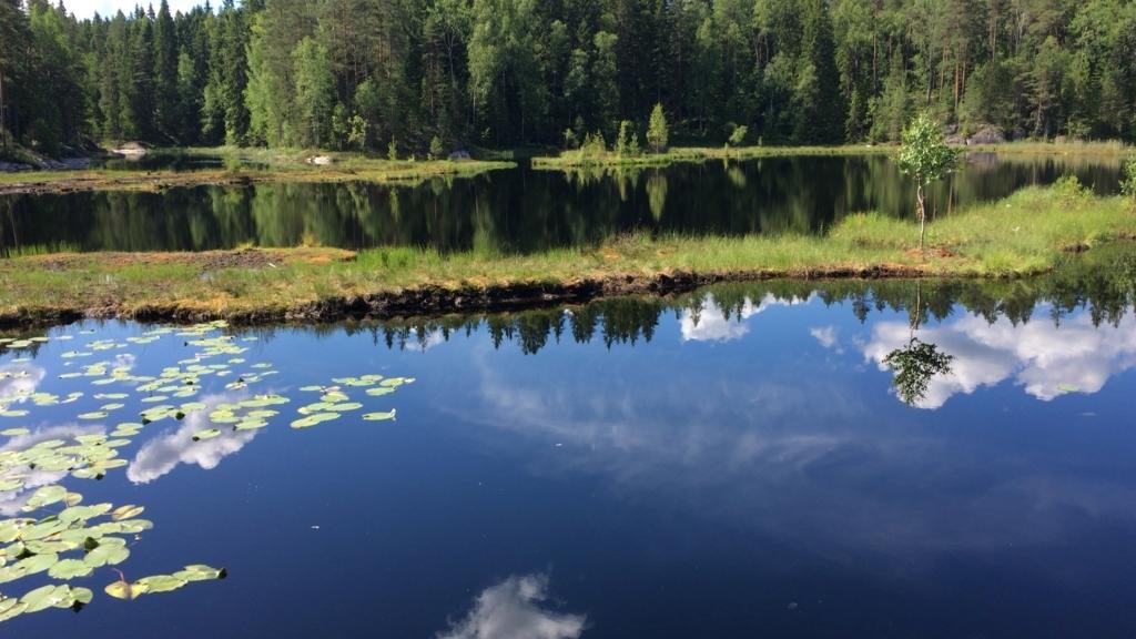Nuuksio lake