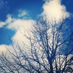 f:id:heaven_ayu:20120106180604j:image