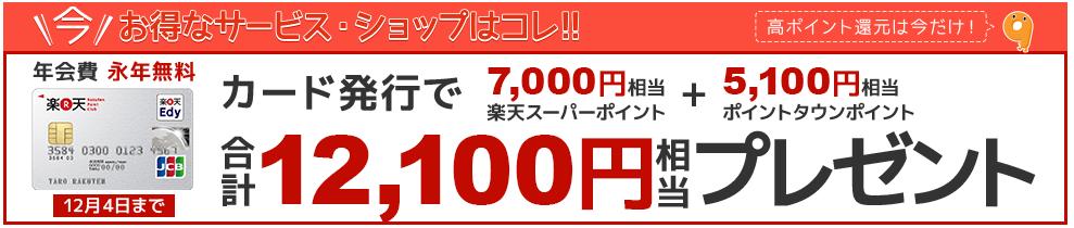 楽天カードで12100円