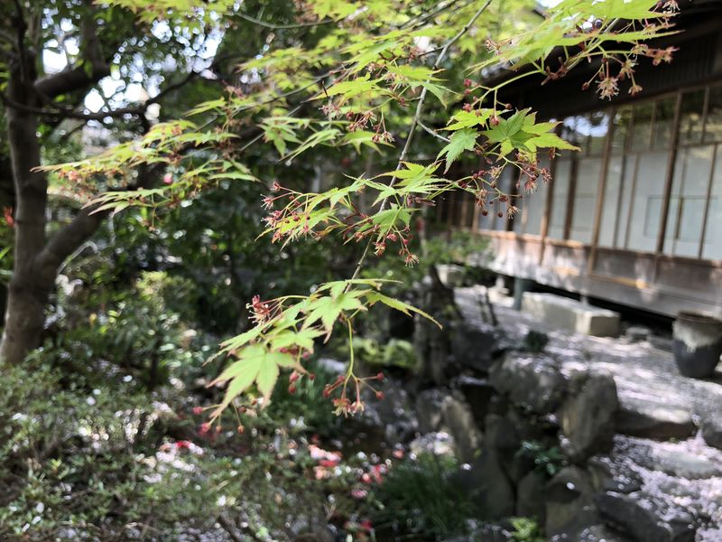 f:id:heihachi-jaya:20180408133613j:image:w360