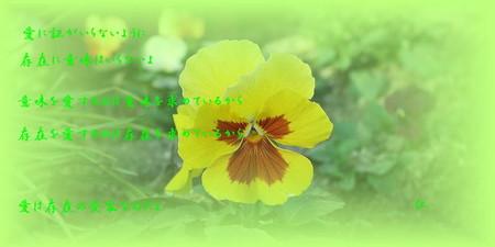 f:id:heiwanotoride77:20070107102655j:image