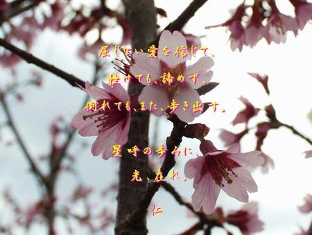 f:id:heiwanotoride77:20070319192956j:image