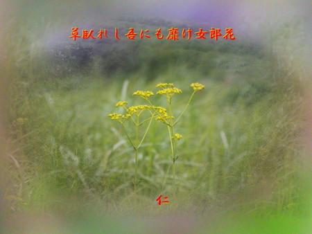 f:id:heiwanotoride77:20120916072543j:image:w360