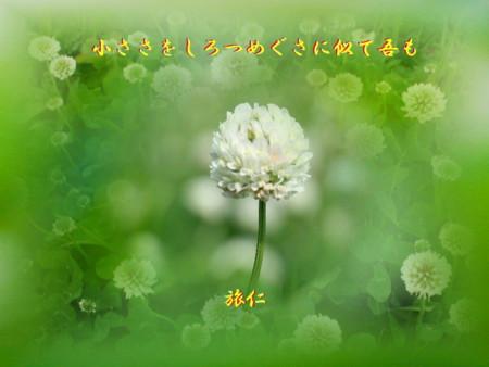 f:id:heiwanotoride77:20140623185903j:image:w360