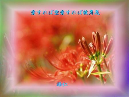 f:id:heiwanotoride77:20140923162100j:image:w360