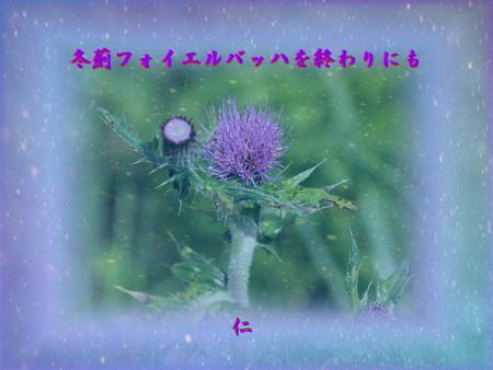 f:id:heiwanotoride77:20190118200450j:image