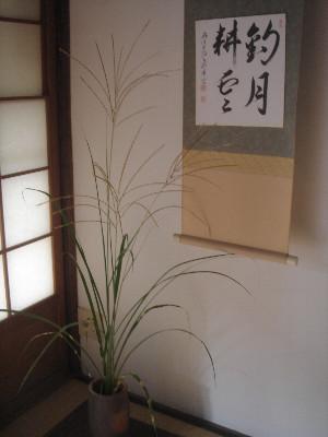 f:id:hekigyokuan:20051003111058j:image