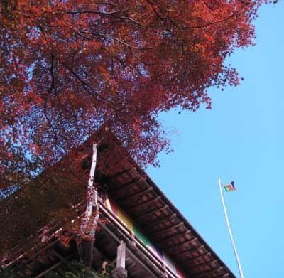 f:id:hekigyokuan:20051125141721j:image
