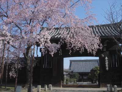 f:id:hekigyokuan:20060404112434j:image