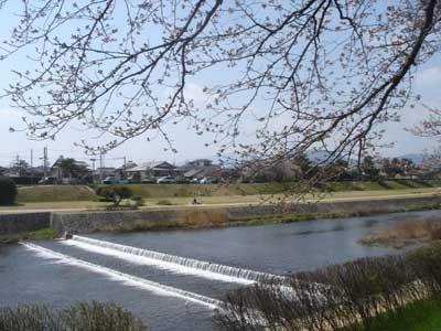 f:id:hekigyokuan:20060404112743j:image