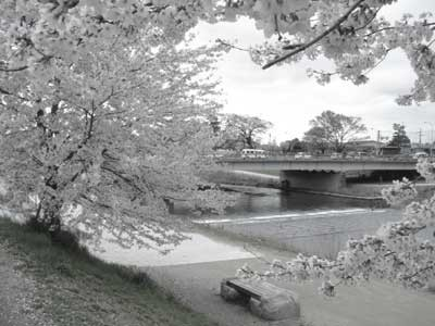 f:id:hekigyokuan:20060414154012j:image