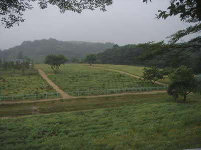 f:id:hekigyokuan:20060627155535j:image