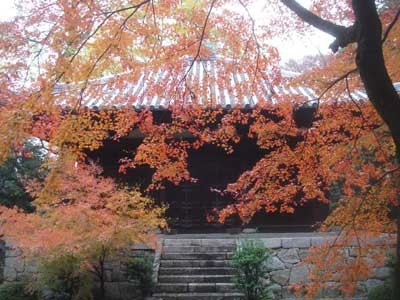 f:id:hekigyokuan:20061127141959j:image