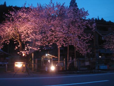 f:id:hekigyokuan:20070423155001j:image