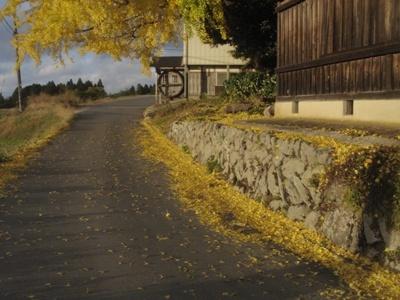 f:id:hekigyokuan:20071118161140j:image