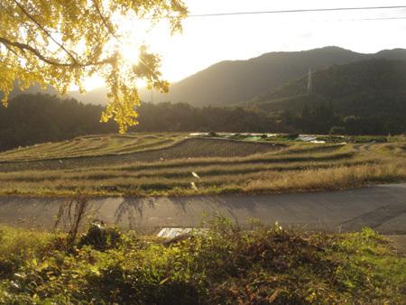f:id:hekigyokuan:20071121144726j:image