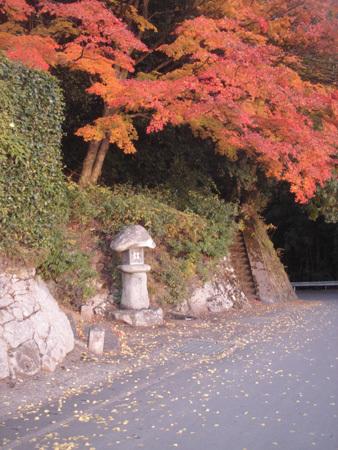 f:id:hekigyokuan:20071121144804j:image