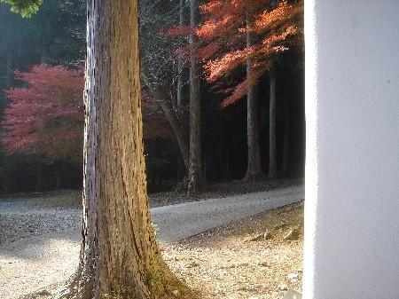 f:id:hekigyokuan:20071128001420j:image