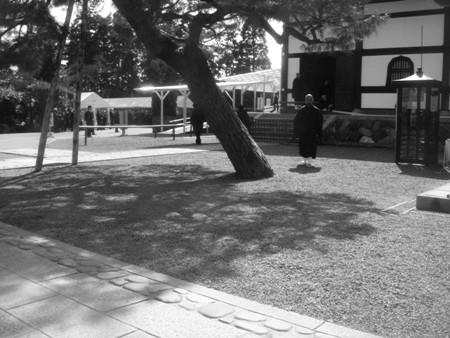 f:id:hekigyokuan:20080306110633j:image