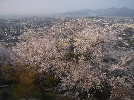 f:id:hekigyokuan:20080404064612j:image