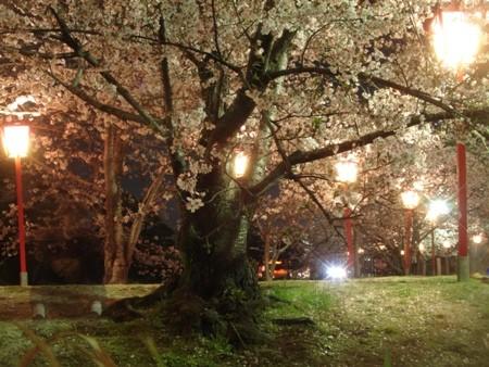 f:id:hekigyokuan:20080405201153j:image